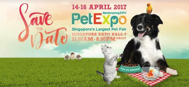 pet-expo