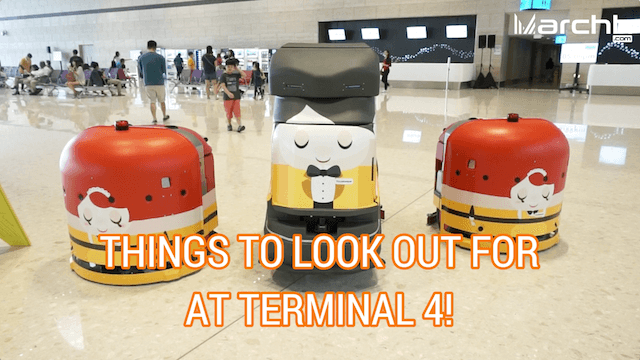 things-to-look-out-for-at-terminal-4